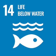 SDG 14.png