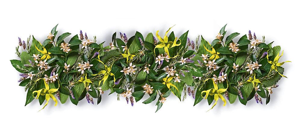 flower_image.jpg