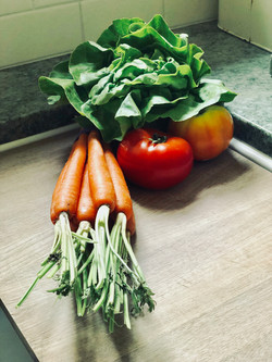 Green Salad Composition