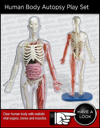 Human Body Autopsy Play Set