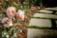 Flowers & Food-7.jpg