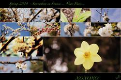 Flickr - ~ Spring  2014  ~