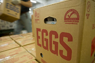 UEP-Egg-Packing-UEP-Certified.jpg