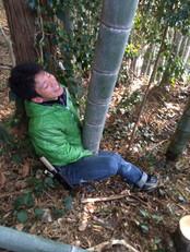 竹装飾_img (29).JPG