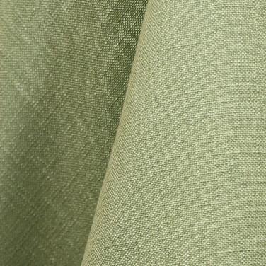 Panama - Celery 873.jpg