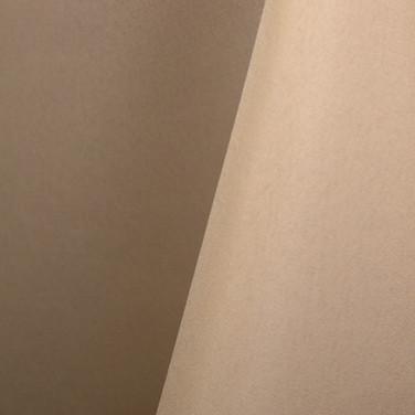 Standard Polyester - Beige 102.jpg
