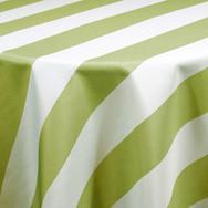 Olive Cabana Stripe Printed Poly