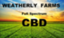 cbd diabetes cure5.jpg