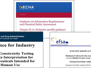 OECD TG 489 Prompts More Regulatory Requirements for the In Vivo Comet Assay