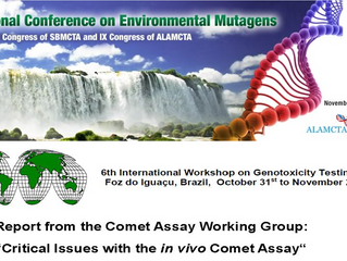 Helix3 participates as expert panel member at the IWGT on the comet assay in Brazil
