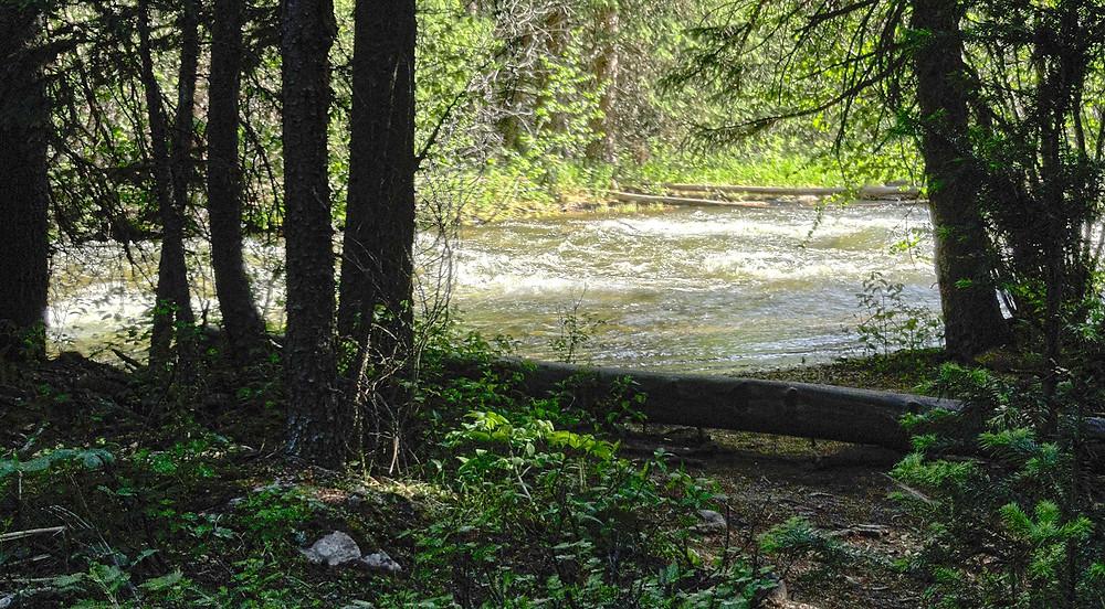 Monarch Lake, Grand Lake, Rocky Mountain National Park,Buchanan Creek