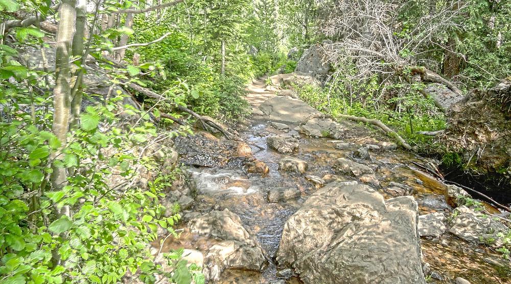 Monarch Lake, Grand Lake, Rocky Mountain National Park