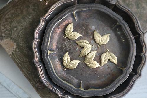 金色雙瓣小葉