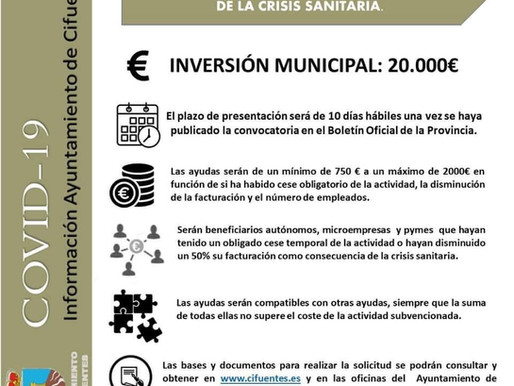 CONVOCATORIA AYUDAS APOYO AUTÓNOMOS, MICROEMPRESAS Y PYMES CRISIS SANITARIA