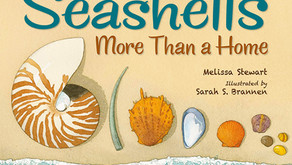 Seashells More Than a Home: Perfect Picture Book Friday