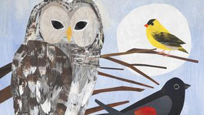 Counting Birds -- Perfect Picture Book Friday