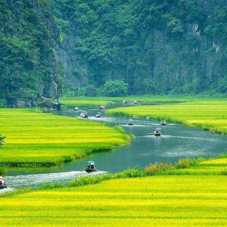 Vietname - Uma composição poética ao silêncio