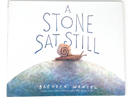 A Stone Sat Still -- Perfect Picture Book Friday
