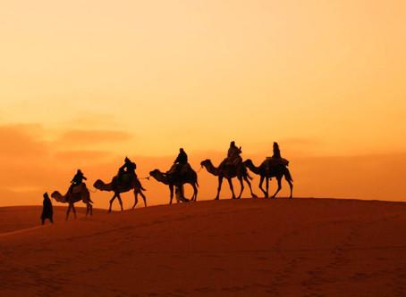Sahara - Uma comunhão de sentidos
