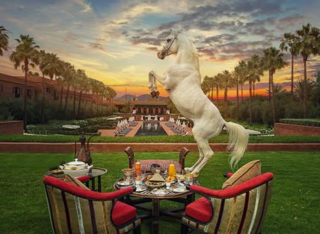 Selman Marrakech - O palácio dos puro-sangue árabe