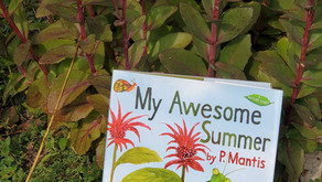 My Awesome Summer -- Perfect Picture Book Friday