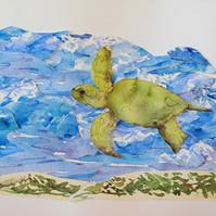 Sea Turtel Swim