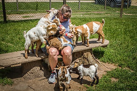 Baby Goats and Me.jpg