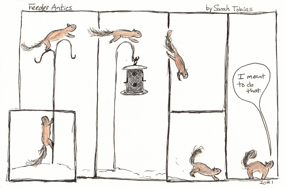 "Comic, Squirrle climbs pole, leaps to a birdfeeder, overshoots, and lands. Last frame says, ""I meant to do that."""