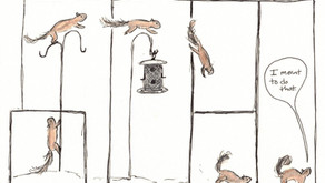 Squirrel Appreciation Day: A Comic, a Graphic Novel, and Some Fun