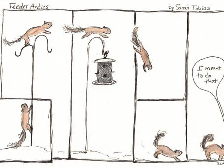 Squirrel Appreciation Day: A Comic, a Graphic Novel, and Some Fun