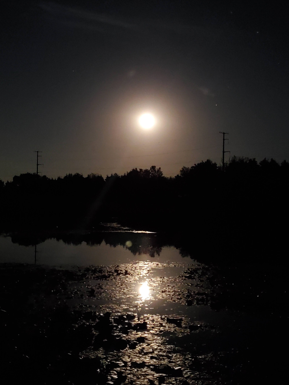 Full Moon and a reflection of the moon on the pond.