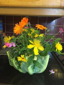 Vegetable Flower Vases
