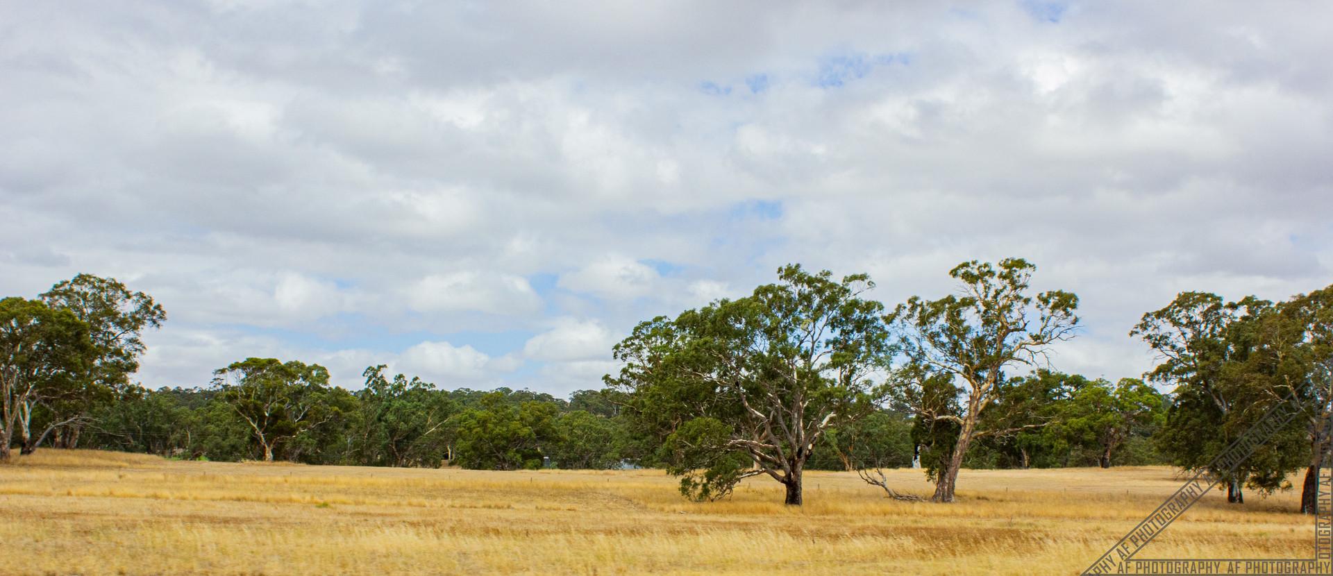 Birdwood South Australia SA031