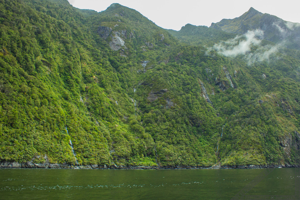 Milford Sound New Zealand NZ063