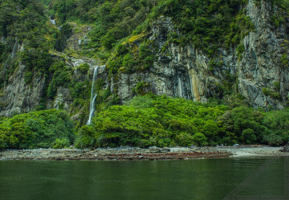 Milford Sound New Zealand NZ048