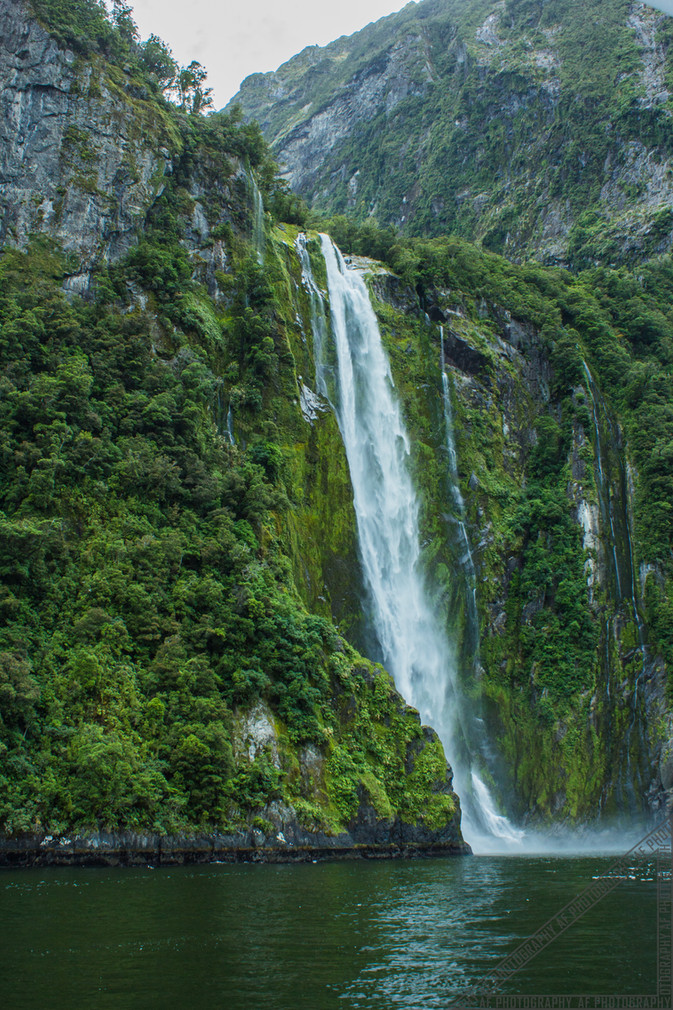 Milford Sound New Zealand NZ070