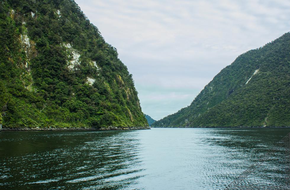 Milford Sound New Zealand NZ050