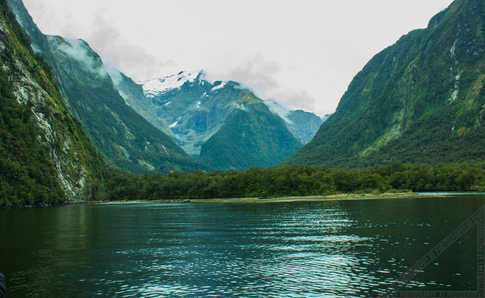 Milford Sound New Zealand NZ078