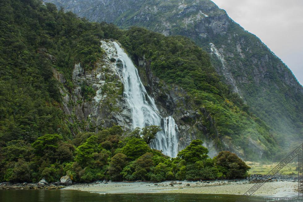 Milford Sound New Zealand NZ085