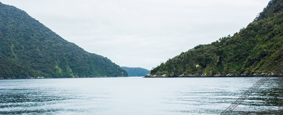 Milford Sound New Zealand NZ053
