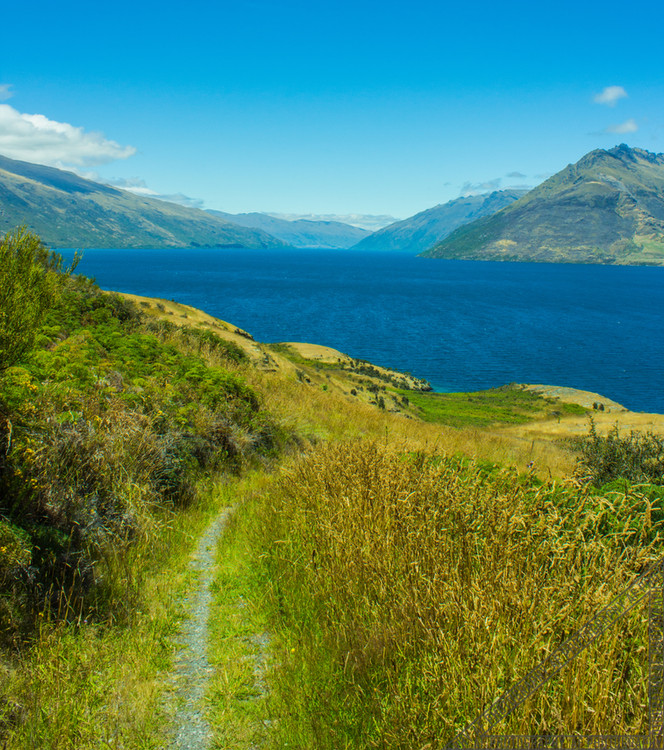 Queenstown New Zealand Lake Wakatipu NZ034