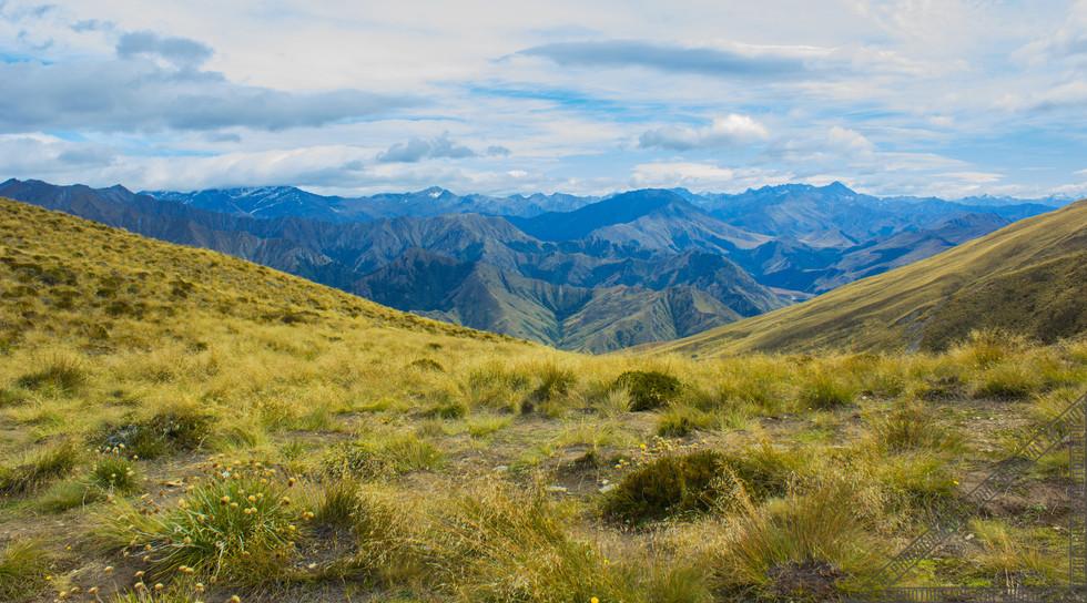 Mount Ben Lomond Queenstown New Zealand NZ097