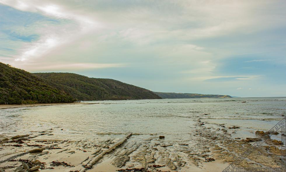Great Otways State Park South Australia SA006