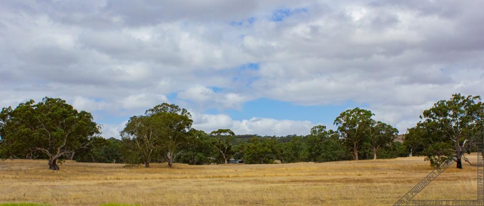 Birdwood South Australia SA030