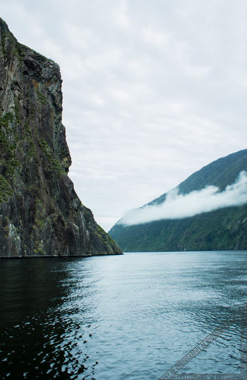 Milford Sound New Zealand NZ043