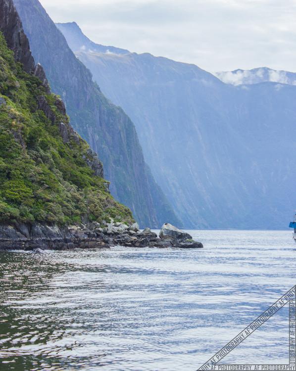 Milford Sound New Zealand NZ066