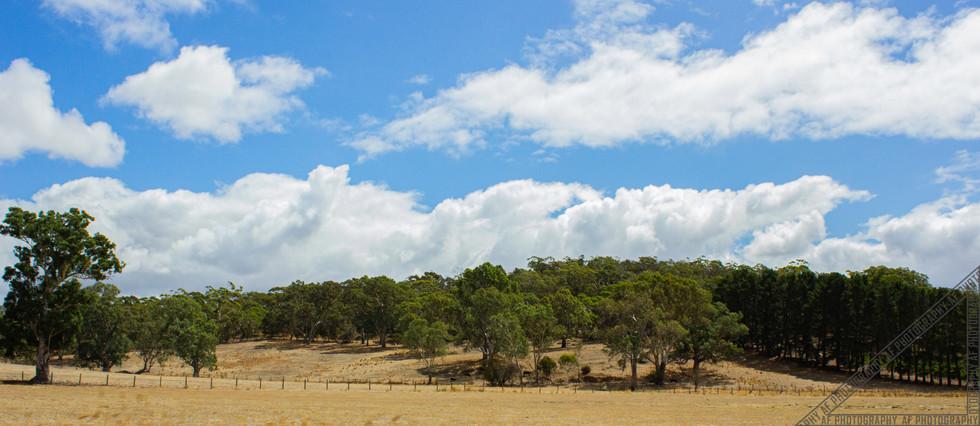 Birdwood South Australia SA029