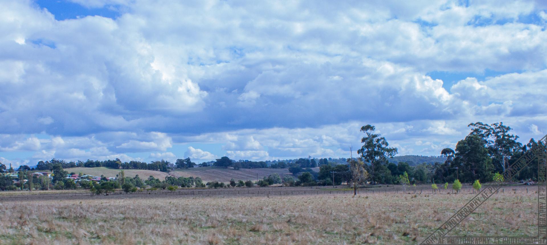 Healesville Victoria HV018