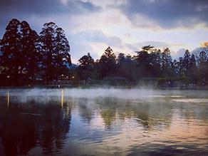 大分県 湯布院 金鱗湖