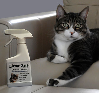 Litter Care, litter box spray, with Daryl, one of our original cat testers.